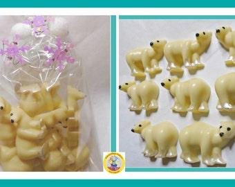 Polar Bear Gift Chocolates/Arctic Animal/North Pole/Kids Chocolate/Wild/Bear Gift/Kids Birthday/Girls Birthday/Boys Birthday/Female Gift