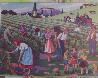 Wall decoration, Set of Table 42 x 30 cm, the harvest in Burgundy or Bordeaux France carrier hood st Emilions grapes clusters