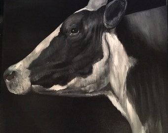 Holstein Black and White Cow