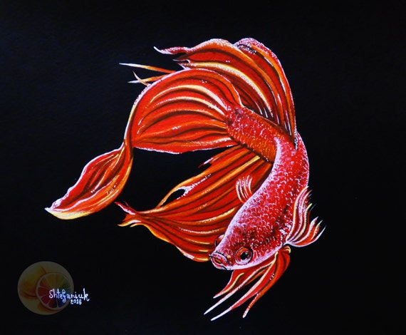 Fish painting red betta fish painting 8x10 for Betta fish painting