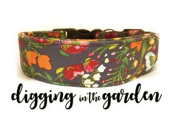 Dog Collar, Digging in the Garden