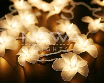 20 White Frangipani Flower Lights Fairy Lights Indoor String Lights Christmas Light Gift Bedroom Nursery Patio Party Wall Hanging Home Decor