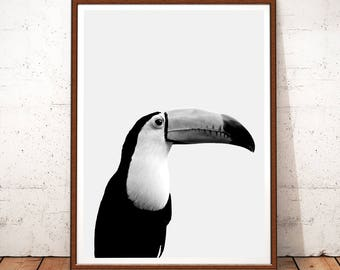 Toucan Print, Toucan Printable Art, Instant Download, Bird Wall Art, Bird Digital Photo, Black and White Decor, Nursery Art, Toucan Art