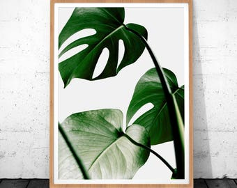 Leaf Print, Plant Prints, Printable Wall Art, Botanical Print, Botanical Art, Tropical Leaf Print, Instant Download Printable Art, Botanical