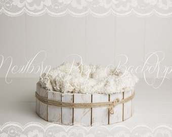 Newborn Digital Backdrop (bowl)