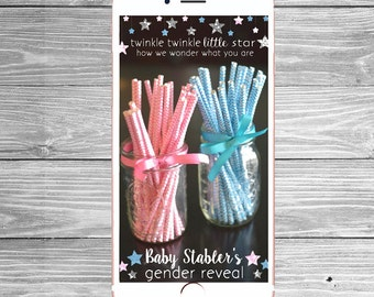 Custom Silver or Gold Twinkle Twinkle Little Star Gender Reveal Snapchat Filter, Gender Reveal Snapchat Geofilter