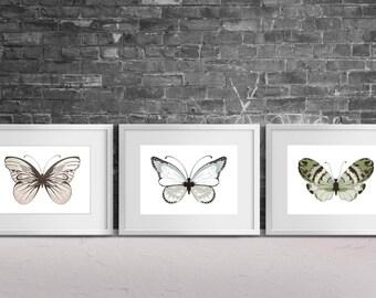 Butterfly Print Set, Butterfly Print, Wall Art Print, Butterflies Print, Butterfly, Nature Print, Insect Print, Minimalist Print, Print Set