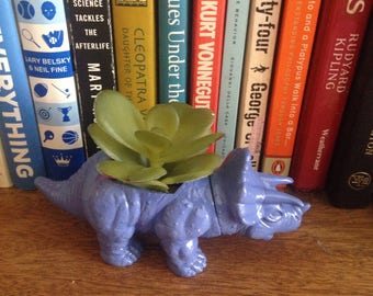 Vara, the itty bitty purple triceratops planter, with realistic succulent / Mother's Day gift / Co-worker gift / Graduation gift