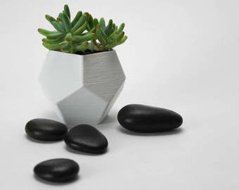 3D Printed Planter / Plant Pot / Indoor / Succulent / Air Plant / Geometric / Dodecahedron / Gift