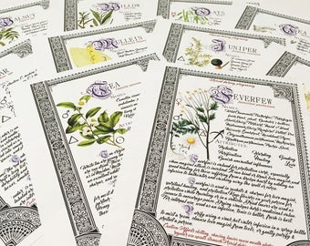 10 Herb Bundle #4  - INSTANT DOWNLOAD Book of Shadows Pages : Willow, Cedar, Mullein, Vanilla, and more