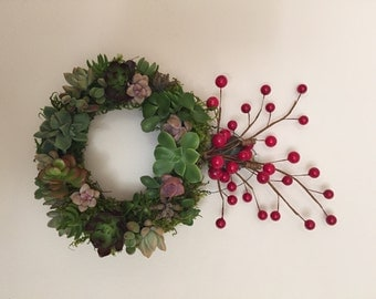 Holiday Succulent Wreaths Made to Order