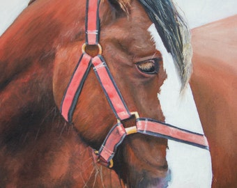 A Cornish Horse (oils, 2016)