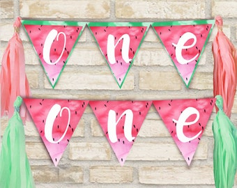 One in a melon party banner for birthday party decor w/ watermelon theme, tassels have Three color options: coral, lime green, teal blue