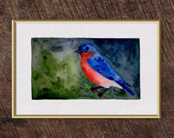 "Eastern Bluebird Watercolor Print - 8"" x 12""  - FREE SHIPPING"