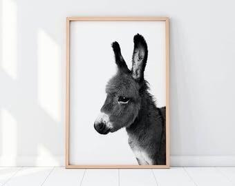 Donkey Print, Donkey Printable, Black And White Animal Print, Black And White Animal Photography, Donkey Cub, Donkey Nursery, Nursery Decor