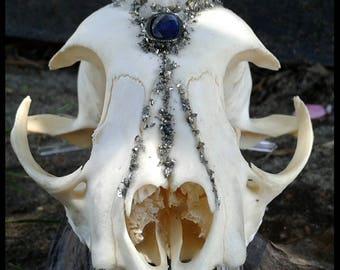 Crystal BobCat Skull