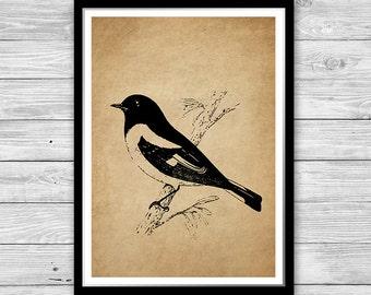 Black Bird Print Art Old Paper Room decor Bird wall art Vintage Style Bird Antique Decoration Textured Paper or Canvas many sizes DIA07