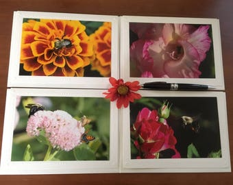 Your Choice: Bee Greeting Cards, Greeting Card, Photograph Greeting Cards, Bee Greeting Cards,Blank Greeting Cards,Nature Greeting Cards