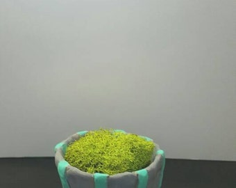 Handmade Clay Planter with Succulent