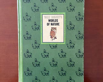 Walt Disney's Worlds of Nature 1965 Retro Vintage Reference Display Book Animals Wildlife