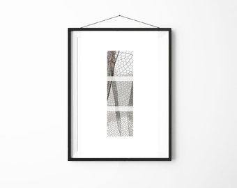 Plant Cell Print | Plant Art | Plant Poster | Biology Illustration | Home Decor | Office Decor | Wall Art | Wall Print | Digital Print