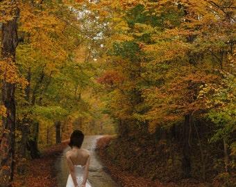 Fall Foliage Digital Backdrop