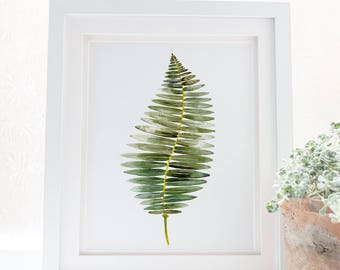 Fern print illustration botanical watercolor art, Fern poster botanical wall art print, Nature art botanical fern prints. Leaf home decor