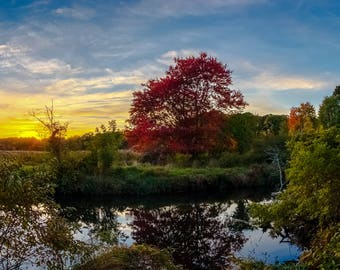 LAUREL MARSH SUNSET (Fall) 8.5X11