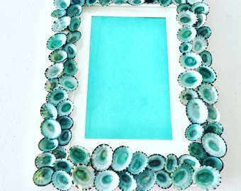 Limpet shell picture frame