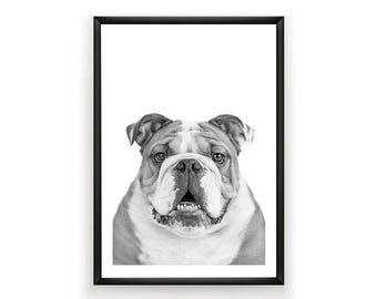 English Bulldog Print, Dog Print, Dog Poster, Bulldog Print, Digital Prints, English, Bulldog, Black & White Prints, Instant Download,