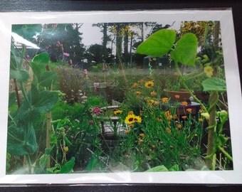 Sho's Garden Sanctuary I