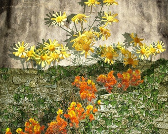 Yellow Wall Flowers and Dancing Red Blooms by Rich Poling