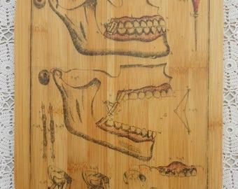 Vintage Dental Ink Transfer