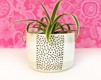 Dotted Stripe Planter-small