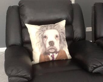 Einstein Dog Face Cushion, Funny Pillow, dog Cushion, dog Pillow