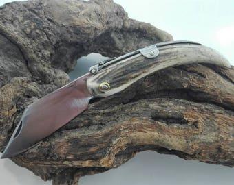 Knife point of deer - Deer stag pocket knife