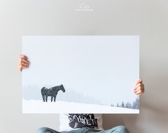 Horse picture picture snowy in forex 100 x 66 cm