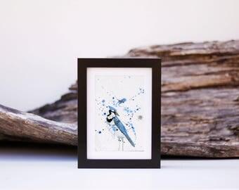Blue Jay 3 - small