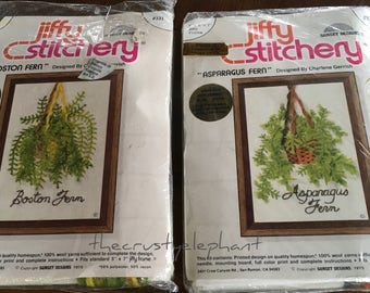 Vintage Bohemian Jiffy Stitchery Boston/Aspagus Fern Needlework Kit, Boho 1975