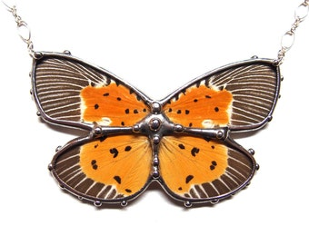 Statement Necklace with Real Moth - Wearable Nature Art - Spectacular Peridrome Orbicularis Moth