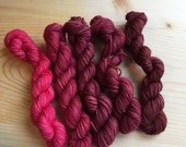 study in red no. 2 - eponymous sock (5, 20g mini skeins)