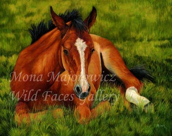 Tuckered Out - Foal Print, Horse Art, Horse Print, Horse Painting, Horse Decor, Western Art, Horse Gifts, Western decor, baby horse print