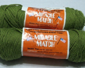 2 Skeins Vintage Miracle Match Yarn Avocado