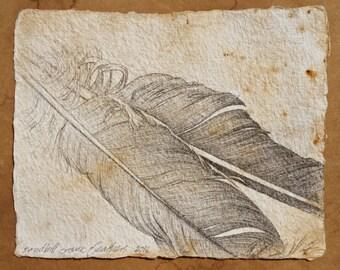 "Sandhill Crane Feathers Pencil Drawing + Graphite, Ink, Watercolor Paper + Deckle Edge + Nature Study + 4"" x 5"" + Original Artwork"