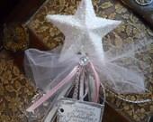 Every Princess Needs A Fairy Godmothr Wand