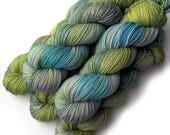 Boston Baby Alpaca Merino Silk DK Handdyed Yarn, Wind in the Willows