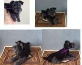 Custom felted Schnauzer dog sculpture