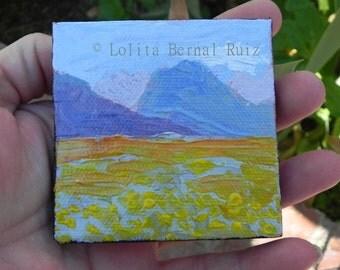 death valley flowers, desert flower, small artwork, wildflower field, mountain vista, orange yellow, landscape, 3 inch square,  MP118