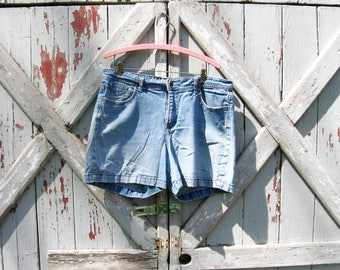 1990s Lee high waist denim shorts 11 12 13 14 L XL
