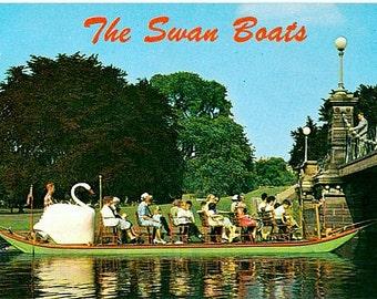 Vintage Boston Postcard - The Swan Boats in Boston Public Garden (Unused)